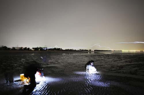 高感度撮影により明るいけれど、実際はホントーに真っ暗闇!